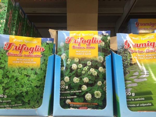 vendita sementi reggio emilia scandiano negozio semi