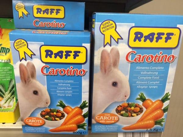 Alimentazione-per-conigli-nani-reggio-emilia