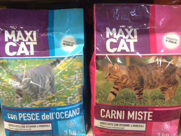 Offerta-cibo-per-gatti-reggio-emilia