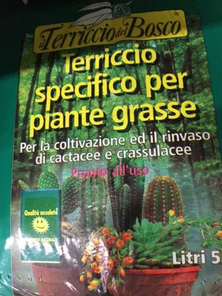 Varie-tipologie di vegetazione